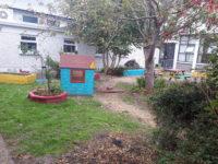 School Garden 2